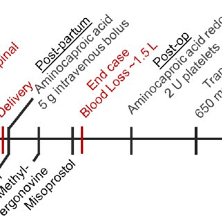 Case management timeline. Hematologic interventions for