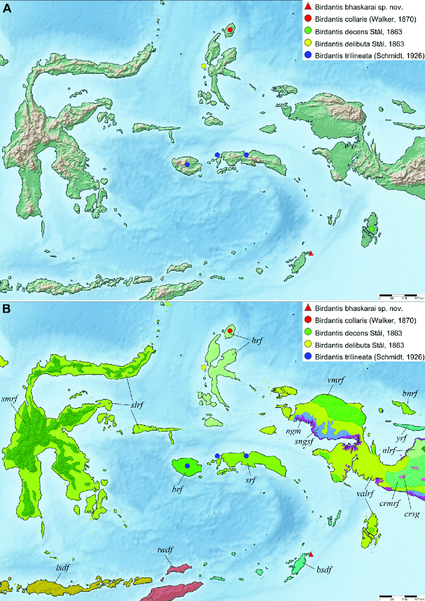 Throughout the year, rain and snow is distributed evenly. Birdantis Spp From Maluku Distribution Map A Topographic Map B Download Scientific Diagram