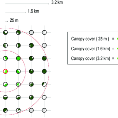 Forest Canopy Diagram How To Tie A Bow Step By Schematic Representation Of The Sampling Method Used Measure Cover At Different Spatial Scales Circular Plots 25 M Radius Were Placed