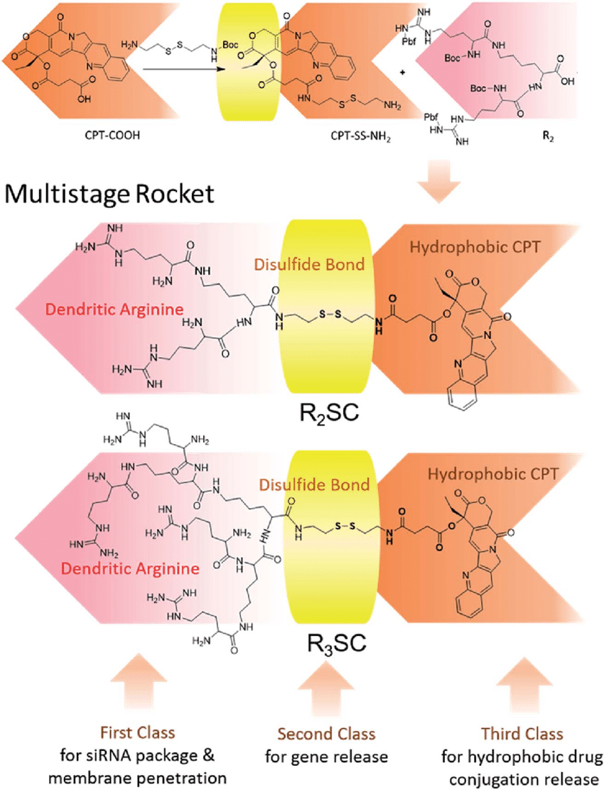 hight resolution of chemical structure of the multistage rocket r 2 3 sc