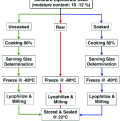 Bean Seedling Diagram Frigidaire Front Load Washer Parts Flow Illustrating How Cooking Time Is Measured For Seeds And Raw Cooked