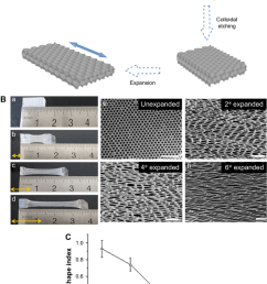 characterization of inverse opal substrates notes a schematic diagram of the preparation [ 850 x 1184 Pixel ]