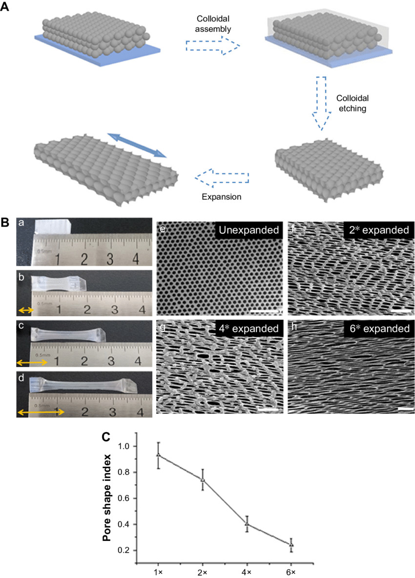 medium resolution of characterization of inverse opal substrates notes a schematic diagram of the preparation