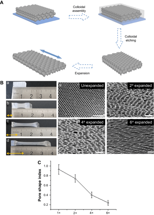 small resolution of characterization of inverse opal substrates notes a schematic diagram of the preparation