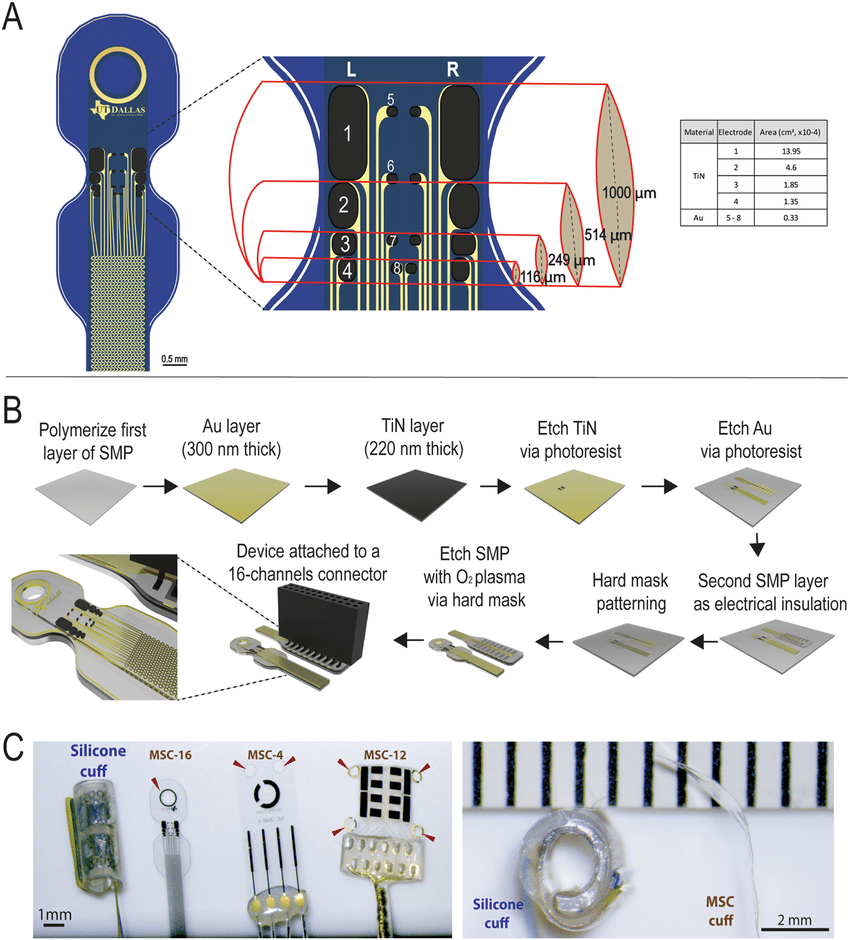 medium resolution of design and fabrication of msc devices a schematic of the msc 16