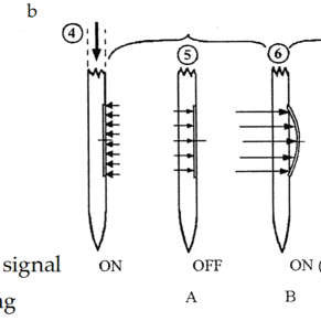Marchetti dilatometer: (a)-flat blade, 1-electric wire, 2
