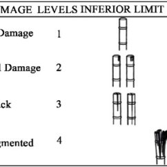 Brass Knuckles Diagram 2008 Chevrolet Malibu Wiring Methodology For Classification Of Damage To Used By 1 Adapted From