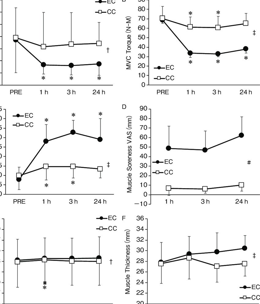 medium resolution of changes in a strain ratio b mvc torque n m c elbow joint download scientific diagram
