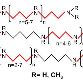 (PDF) Polyamines in Microalgae: Something Borrowed
