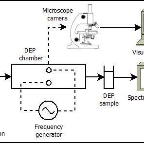 The schematic diagram of the separation experiment as