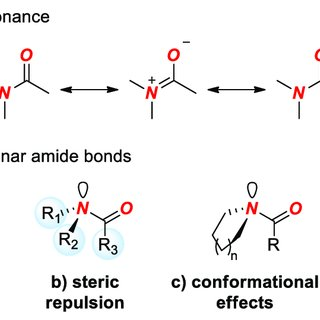 (A) Amide Bond Resonance. (B) Types of Distorted Amide