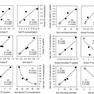 (PDF) A novel isotope pool dilution approach to quantify