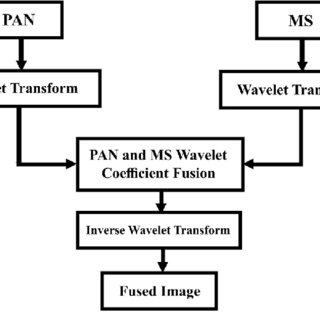(PDF) Spatial frequency discrete wavelet transform image