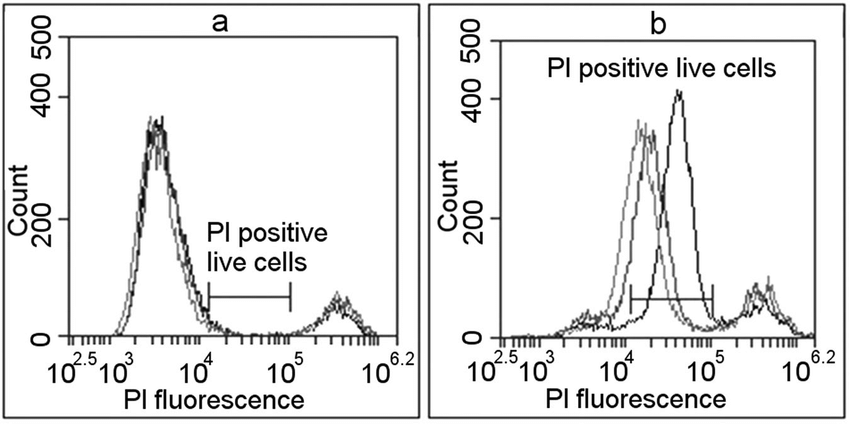 The definition of successful PI electroporation mediated