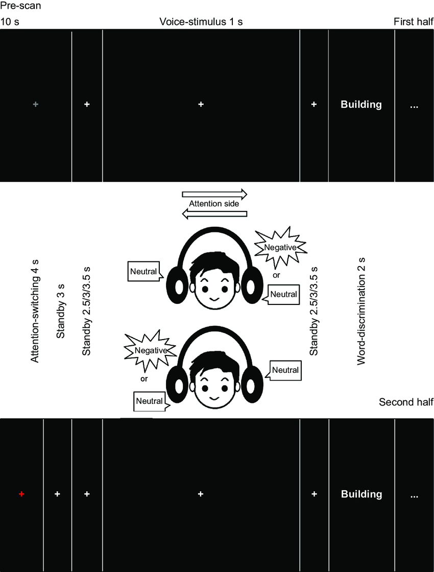 medium resolution of experimental paradigm notes different voices are presented from left download scientific diagram