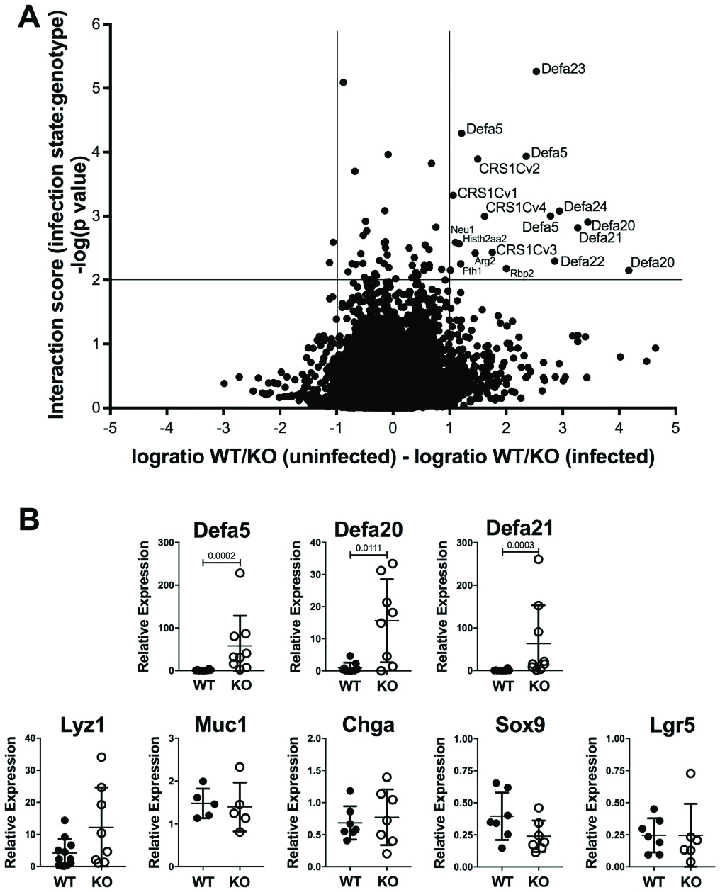 RNAseq expression profile of IECs. (A) Shown is a volcano