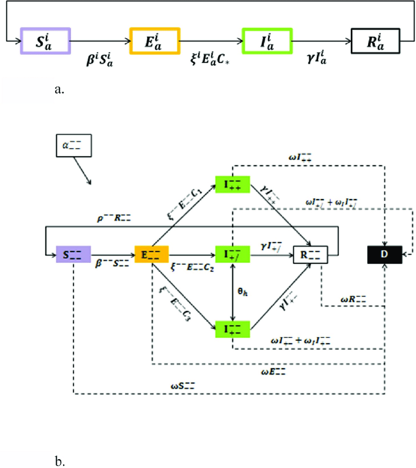 hight resolution of seir transmission dynamics 1a basic seir model assuming a closed system
