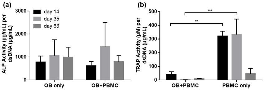 (a) Alkaline phosphatase (ALP) and (b) tartrate-resistant