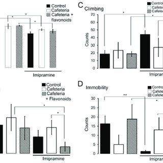 (PDF) Maternal Flavonoids Intake Reverts Depression-Like