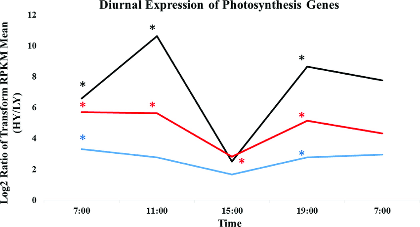 Differential expression of three photosynthesis related