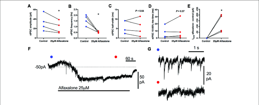 Effects of 25 µM alfaxalone on spontaneous inhibitory post