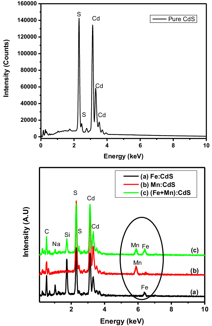 Energy dispersive analysis of X-ray spectra of pure CdS a
