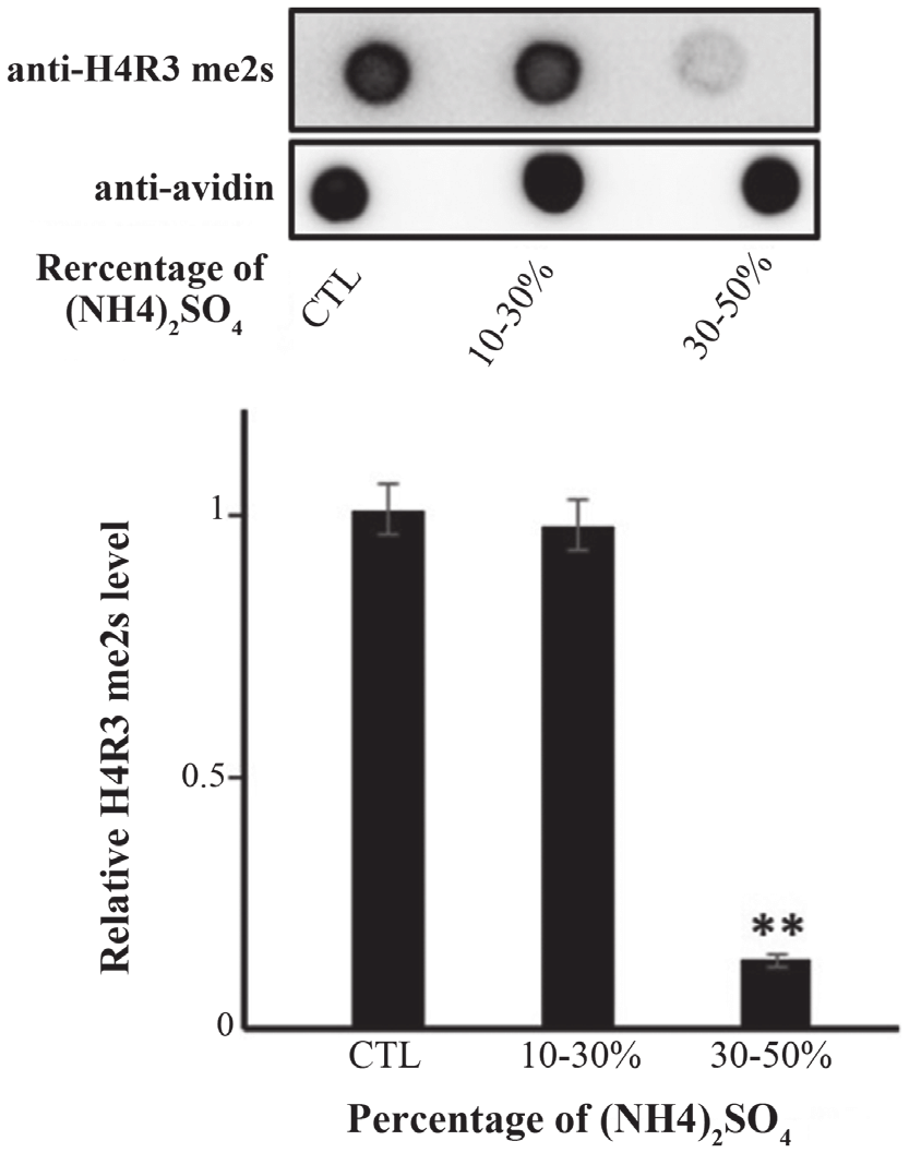 hight resolution of demethylation activity exists at a 30 50 nh4 2 so 4 precipitation