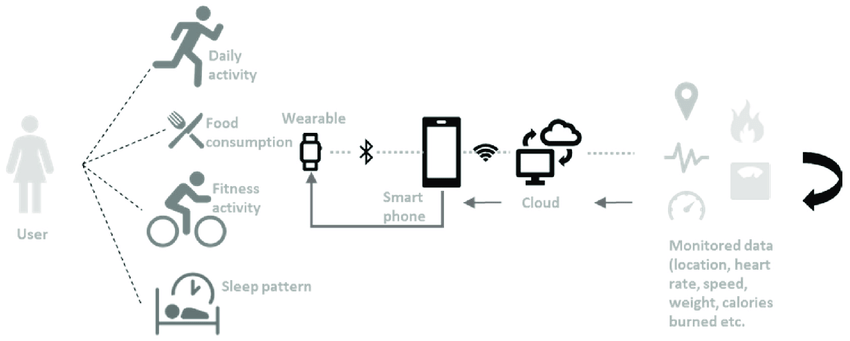 Block diagram example of a Fitness wearable's process