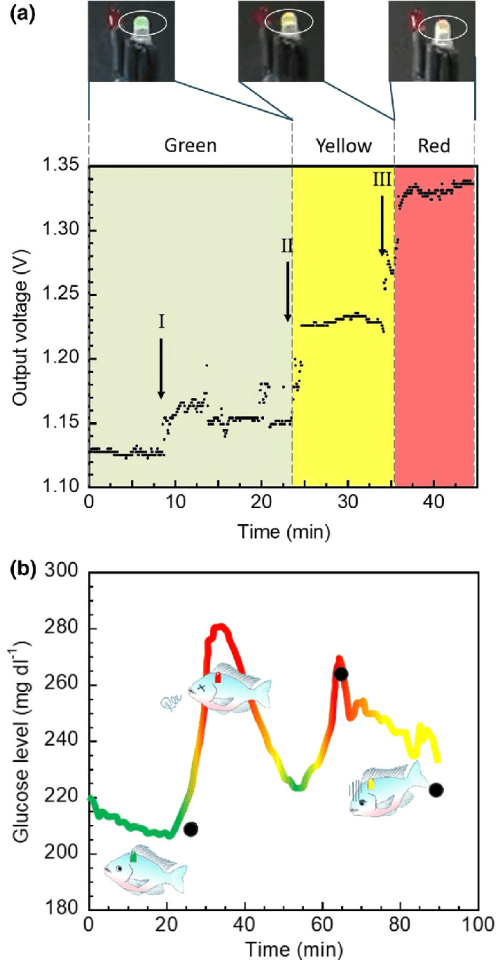 small resolution of monitoring the glucose concentration by a light emitting diode led color switching