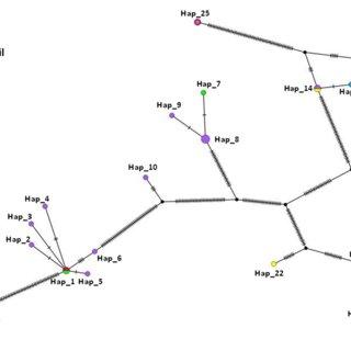 a Amino acid entropy plot obtained from the msa-2b gene ...