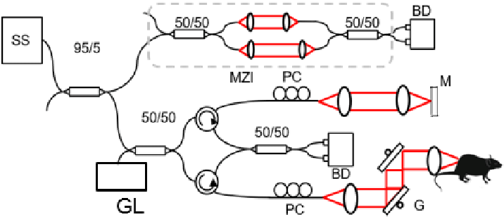 The schematic diagram of SSOCTA. SS: SweptSource, MZI