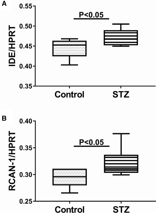 small resolution of increased temporal lobe mrna expression of ide and rcan1 in i c stz treated rats