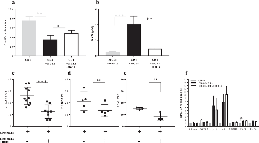 Functional consequences of IDO1 blockade on CD4+ T cell