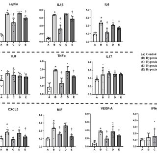 Effect of hypoxia on global DNA methylation and