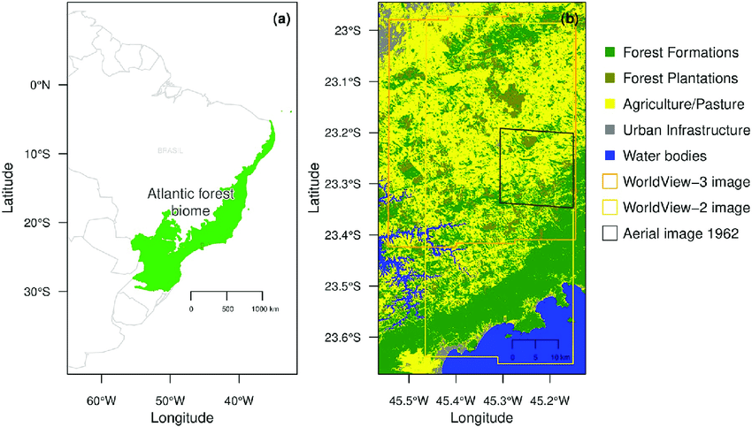 The atlantic forest was one of the largest rainforests of the americas, originally covering around 150 million ha (fig. Geographical Locations Of The Atlantic Forest Biome In Green And Of Our Download Scientific Diagram