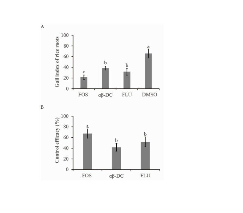 Effect of αβ-DC amendment on nematode infection under