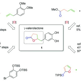 (PDF) Concise Synthesis of Catechin Metabolites 5-(3′,4