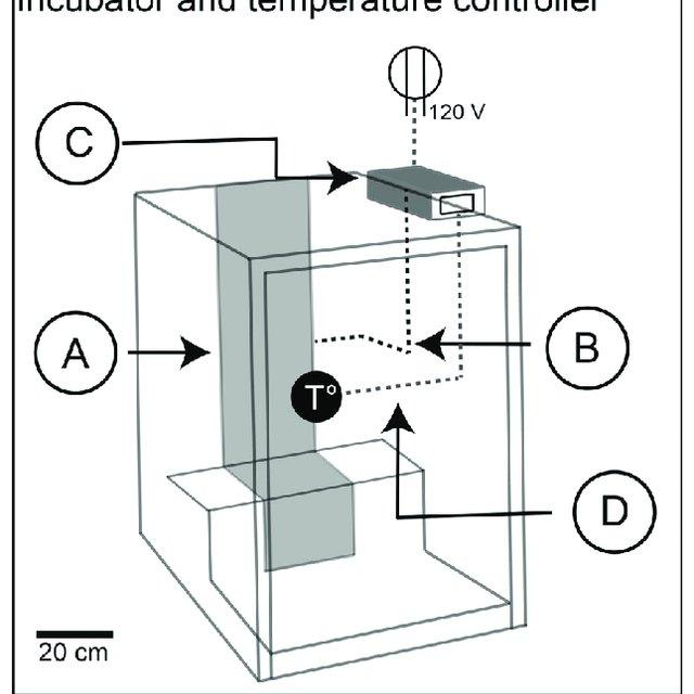 Constant temperature controller for the environmental