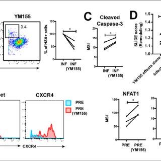 Comparison of HIV-susceptible cells in unstimulated PBMCs