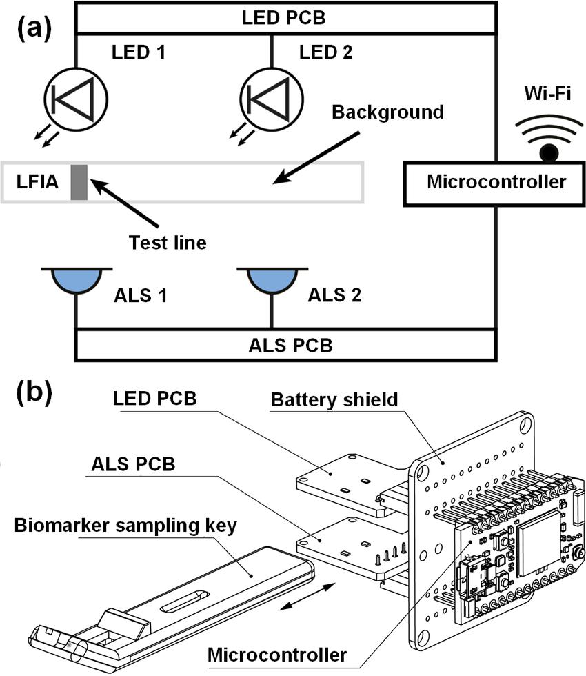 (a) Block diagram of the electronic circuit. (b) Optical