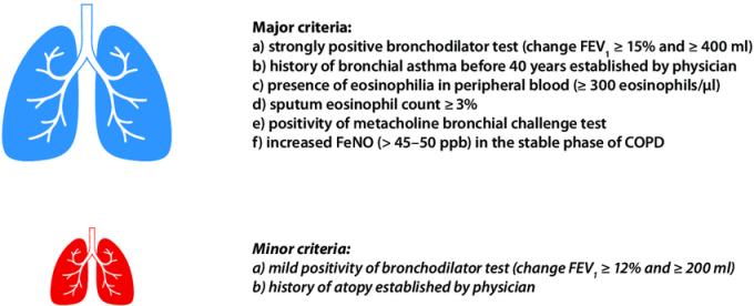 Asthma And Copd Overlap Aco Criteria Download Scientific Diagram