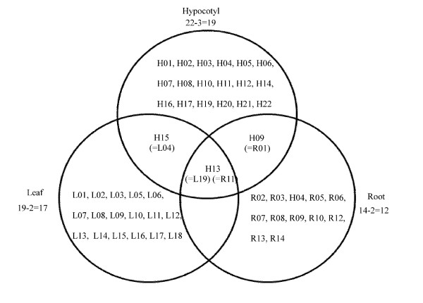 Venn diagram analysis showing up- or down-regulated