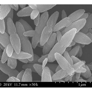 XRD patterns of zinc oxide synthesized at the different