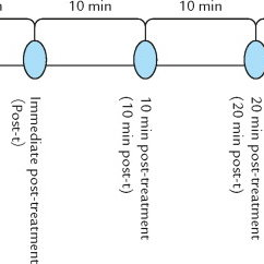 (PDF) A Pilot Study Exploring the Effects of Reflexology