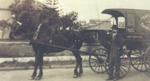 charles horse carriage
