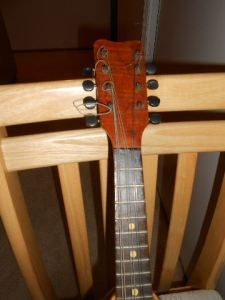 _20150720_5408bw mandolin