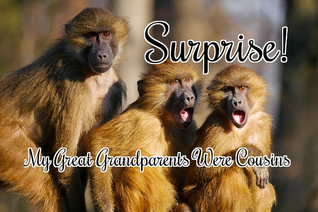 Surprise!  My Great Grandparents are Cousins