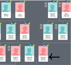 jobson family tree