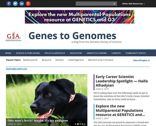 Genes to Genomes