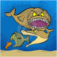 mpt2013-poissons